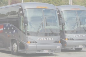 Lucini Transporation - School Buses, Motor Coaches